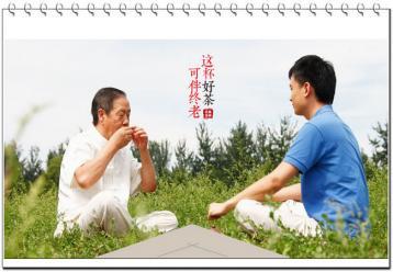 湖南名茶:安化松针|绿茶