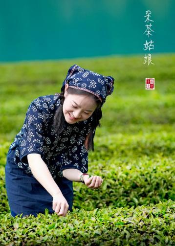 庐山云雾茶|江西十大名茶