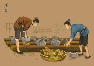 论普洱饼茶的起源之谜