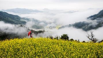 漫话祁红茶诗|祁门红茶文化