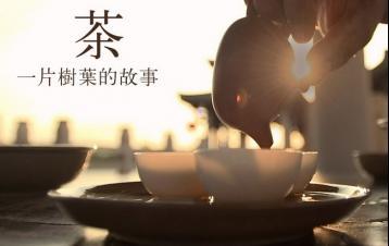 政和工夫红茶精制加工|红茶制作