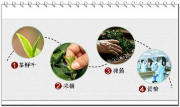 坦洋工夫红茶的制作工艺|坦洋工夫生产工艺