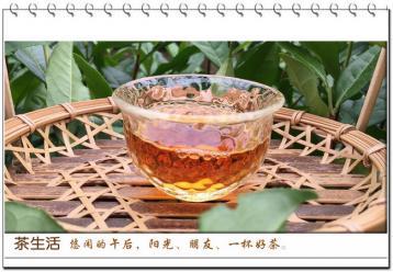 轻轻柔柔说安吉红茶|安吉红茶品鉴