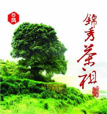 茶树原产地和原始分布中心|中国茶史初探
