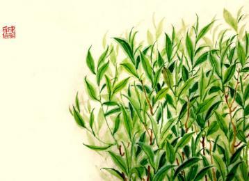 茶联集锦|关于茶的对联