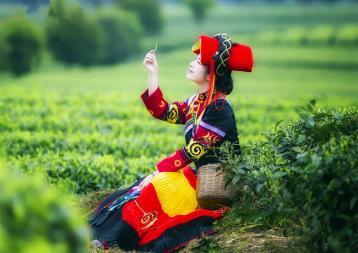 冰箱保存茶叶的注意事项|茶叶保鲜