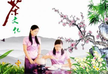 花茶泡法教学视频|学泡茶