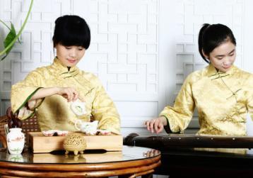 武夷岩茶大红袍泡法视频|茶艺教学