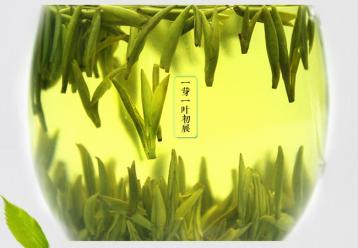 中国黄茶及其特性|茶叶知识
