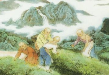 唐代的制茶方法|中国制茶史