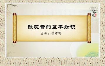 铁观音知识视频|茶知识教学视频
