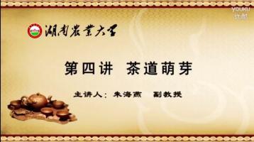 茶道萌芽|茶道茶艺知识视频