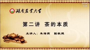 茶的本质|茶道知识视频