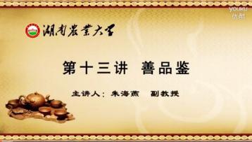 茶的品鉴知识|茶道教学视频