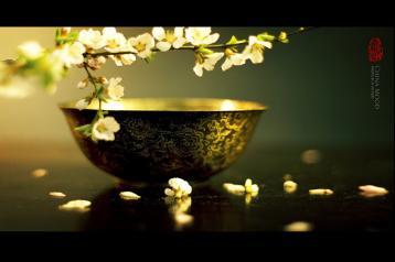 乌龙茶的保管与茶叶品质变化