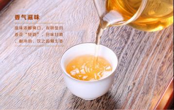 草兰单丛茶|凤凰单枞茶