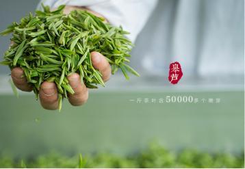"""""""阳羡雪芽""""茶生产技术规范开始修订"""
