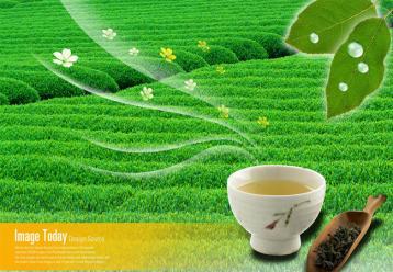 绿茶常温生物保鲜剂及其应用方法