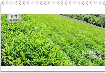 君山银针茶叶图片|黄茶图片素材