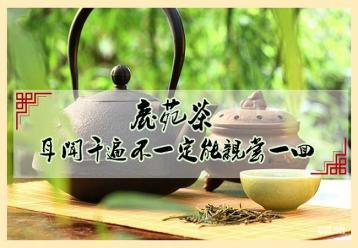 鹿苑茶:远安黄茶制作工艺