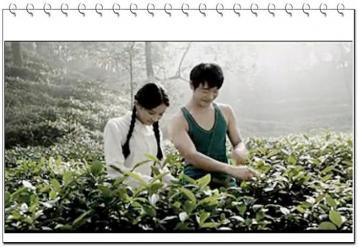 微电影《君山银针 一杯茶 一辈子》