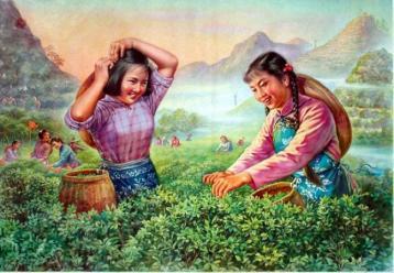 中国茶叶的保健疗效