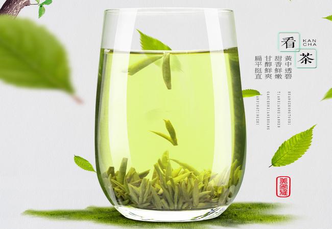 黄茶 茶叶种类