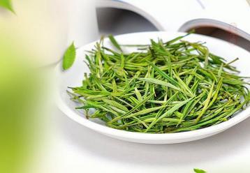 安吉白茶的制作工艺