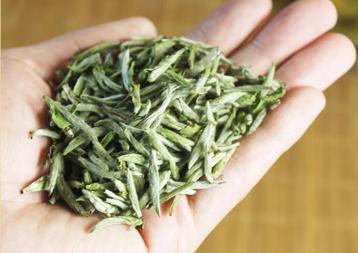 如何辨别福鼎白茶是新茶还是老茶