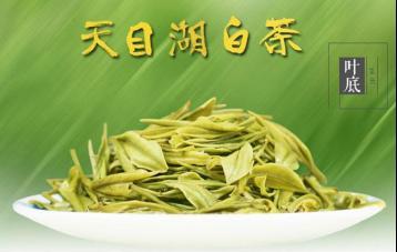 三种贮存天目湖白茶的方法|溧阳白茶