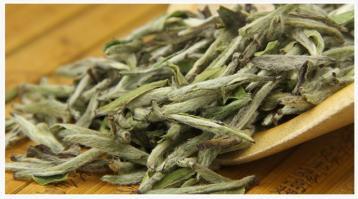 探秘白毫银针 解读白茶珍品的价值