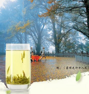 蒙顶黄芽生态环境介绍