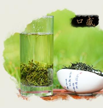 宁乡沩山毛尖茶