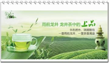 西湖龙井茶树的播种技术