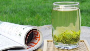 日照绿茶的特点