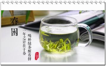 挑选日照绿茶有什么方法