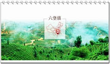 六堡茶的故事|六堡茶历史