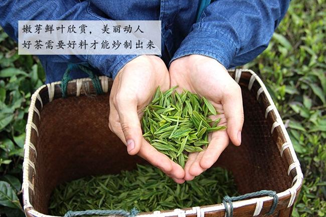 六堡茶的制作工艺