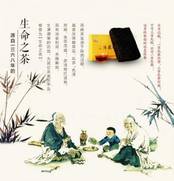 泾阳茯砖茶历史沿革|陕西茯砖茶文化