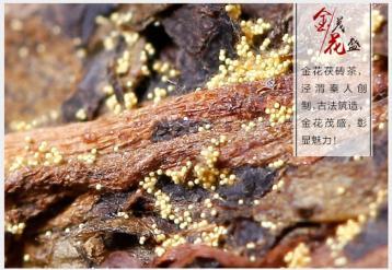 泾阳茯砖茶:丝绸之路上的生命之茶