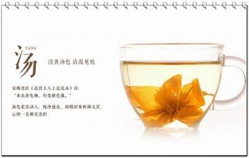 金莲花茶的泡法|金莲花的功效