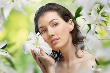 养阴清热最好的一种花:百合花|吴大真
