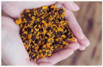 昆仑雪菊茶有什么功效|和其他菊花茶的区别