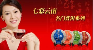 2016年七彩云南普洱茶批发价格