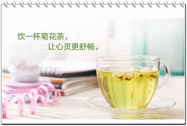 菊花茶价格