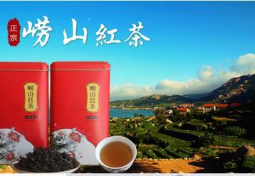 崂山红茶价格|青岛崂山红茶价格