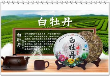 2016福鼎白茶白牡丹茶价格表|白茶品牌报价