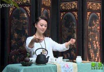 茶艺师静悠表演铁观音茶道|铁观音泡法