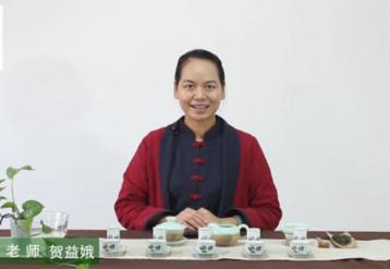 福建安溪铁观音茶艺教学|学茶泡茶
