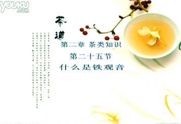 什么是铁观音茶|韩义海茶道讲座